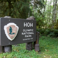 20140814-163448-olympic national park-0421