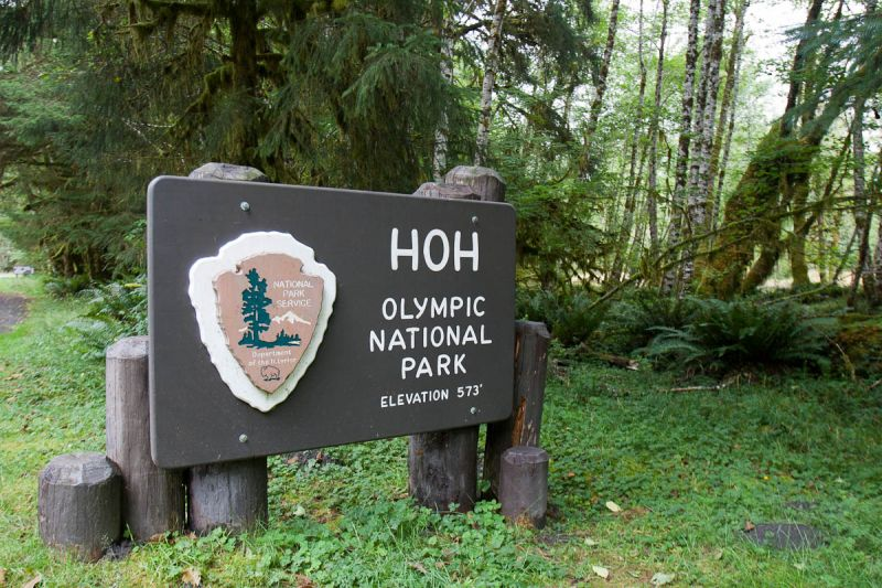 Long Time Gone! – Olympic National Park – August 2014
